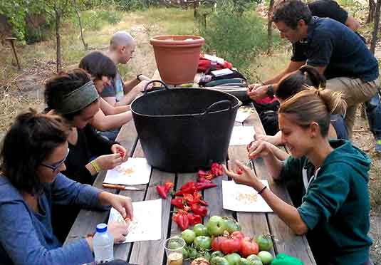 curso-monitor-huerto-ecologico