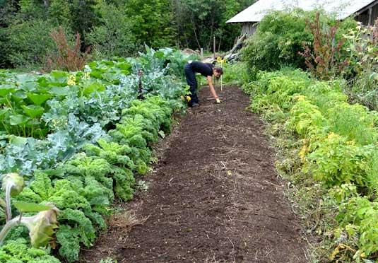 curso-teorico-practico-de-agricultura-ecologica
