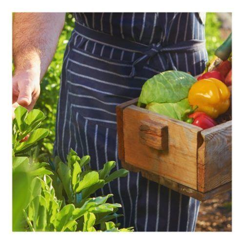 Curso de Introducción a la agricultura ecológica