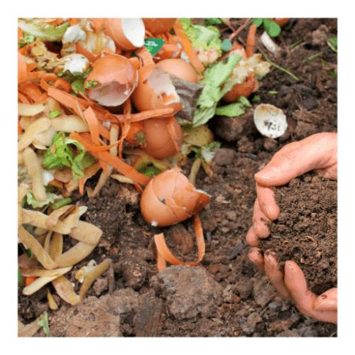 Curso de compostaje